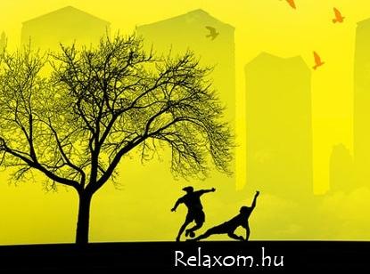 tánciskola, hastánc, hip-hop, rúdtánc, gyermektánc oktatás, jóga, sport